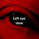 Left eye view